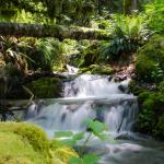 Water Sustainability Act